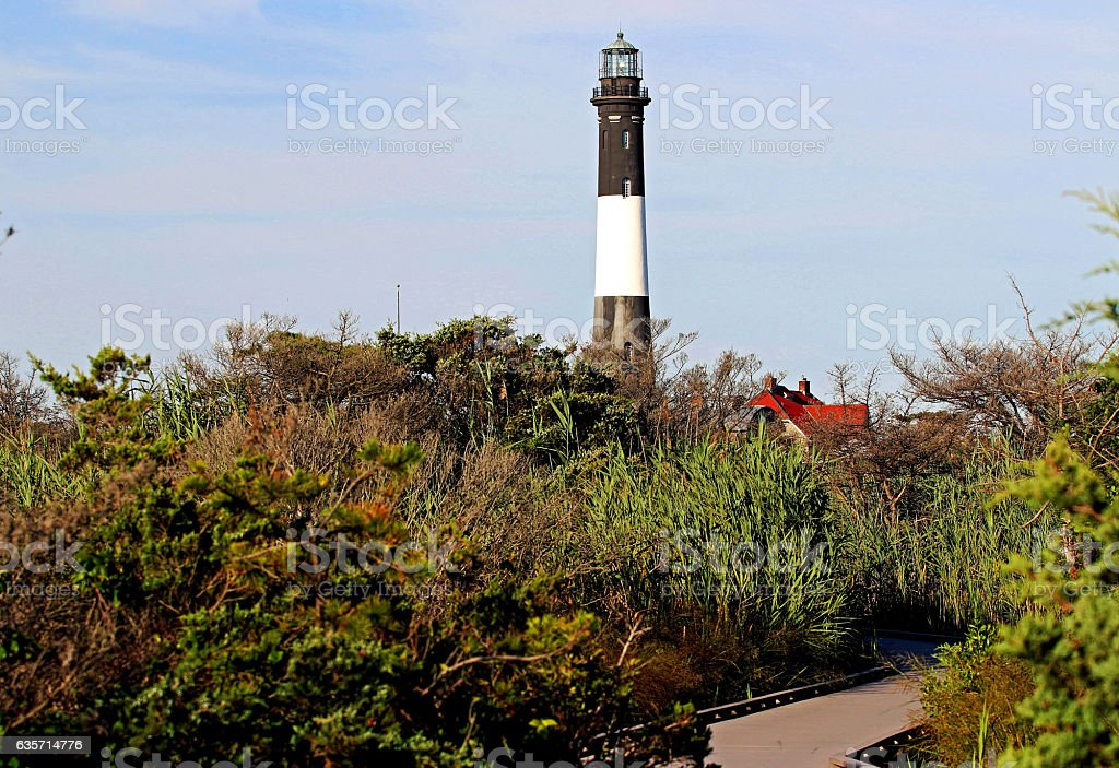 The Fire Island Lighthouse through the brush stock photo