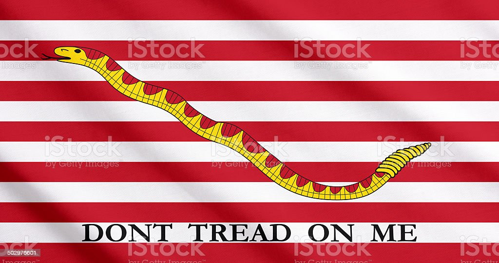 The First Navy Jack waving stock photo
