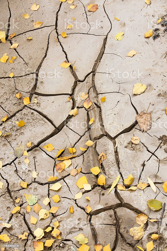 the fissured earth royalty-free stock photo