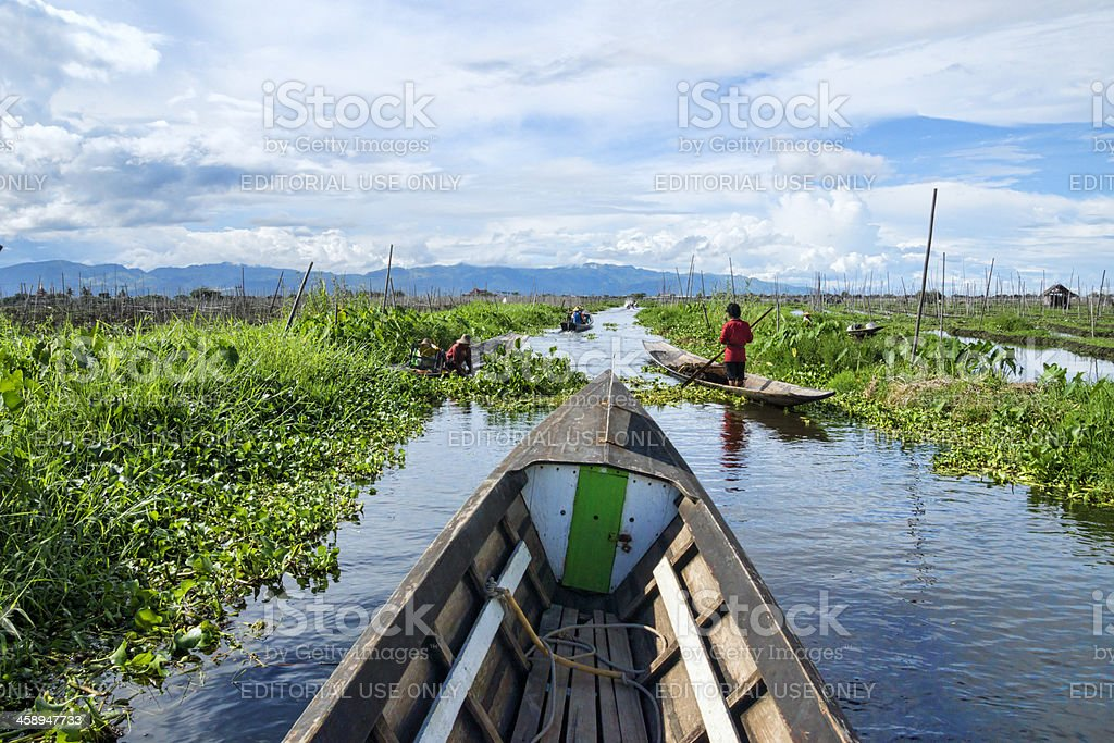 The floating gardens of Inle Lake royalty-free stock photo