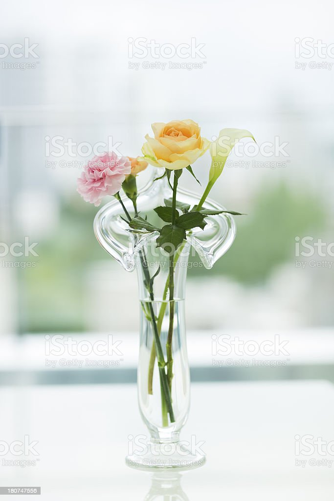 The flower which I put in a vase royalty-free stock photo