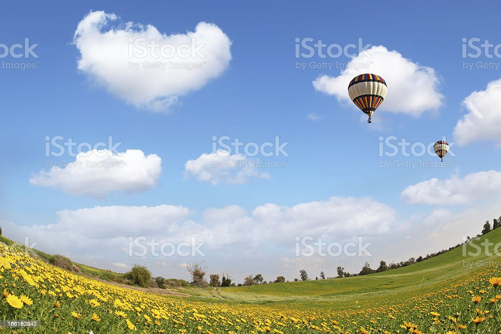 The flying  balloon royalty-free stock photo