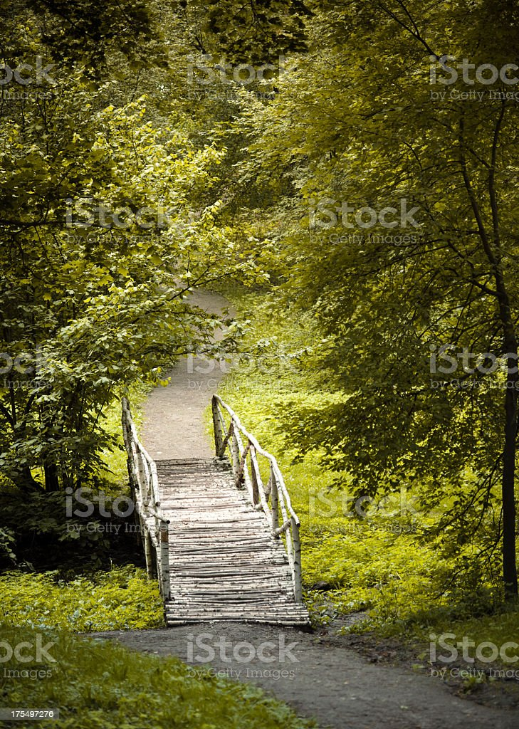 The Forgotten path royalty-free stock photo