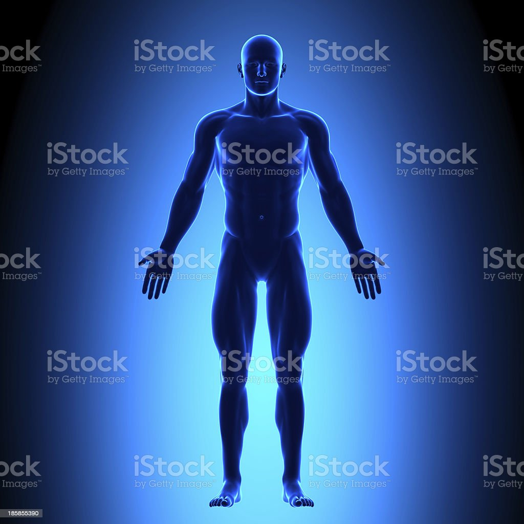 The front view of a man's full body in blue stock photo