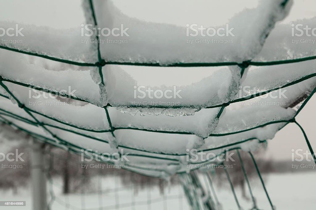 The frozen net royalty-free stock photo
