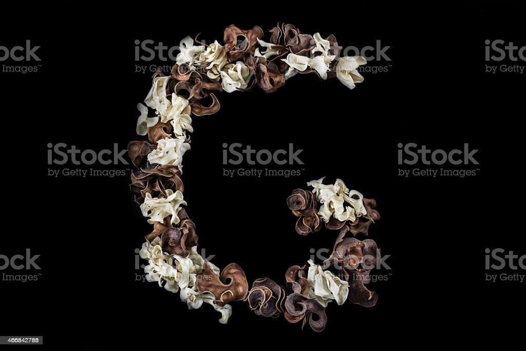 The G letter made of dried herbs and plants isolated stock photo