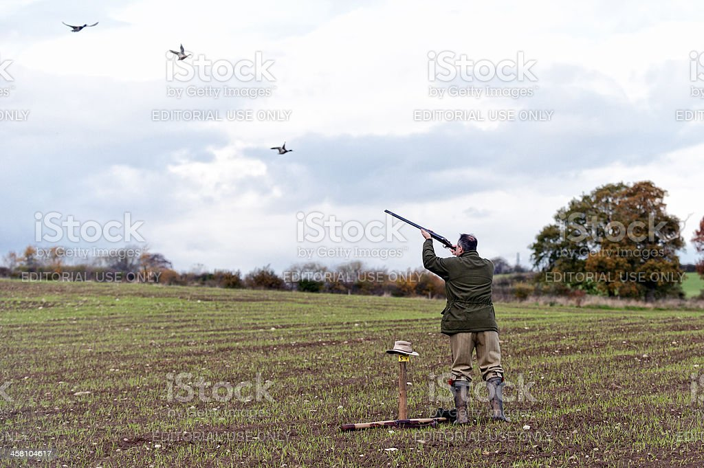 The game shoot royalty-free stock photo