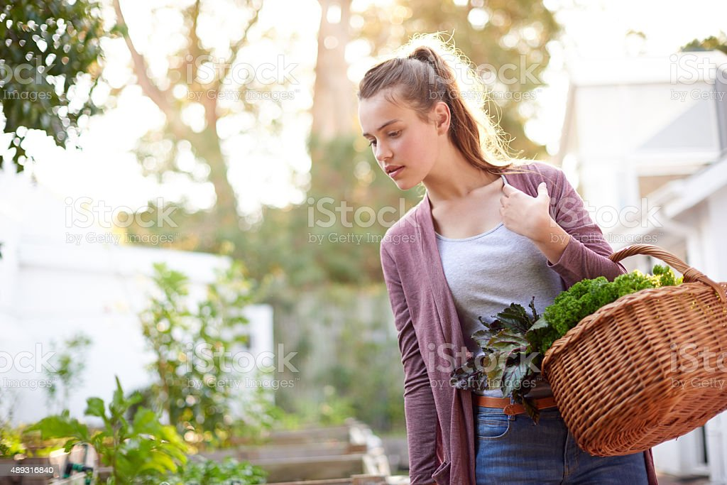 The garden is the best place to do your shopping stock photo