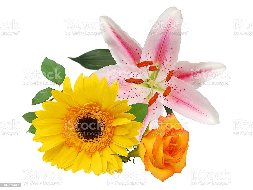 the gardening blooms in bouquet stock photo