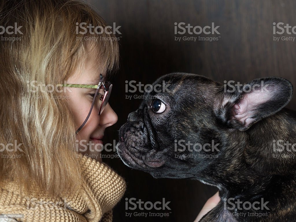 The girl and funny dog, nose to nose stock photo