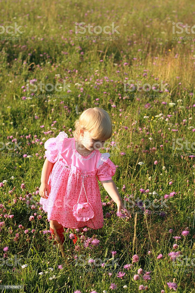 The girl in a pink dress royalty-free stock photo