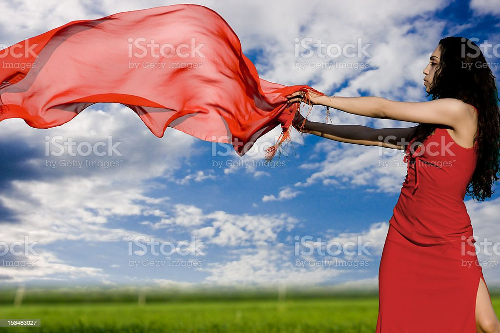 The girl in a red dress royalty-free stock photo