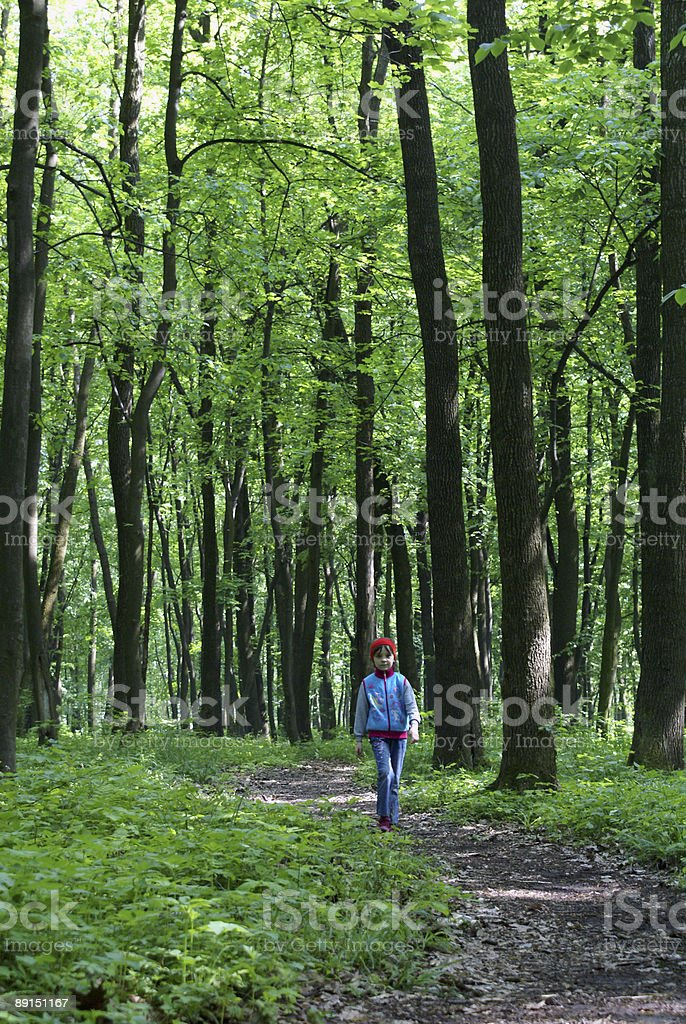 The girl in a wood royalty-free stock photo