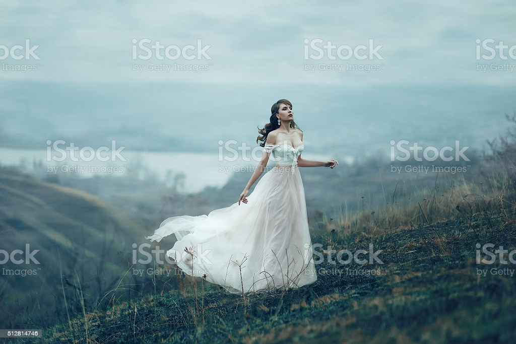 The girl in transparent dress stock photo