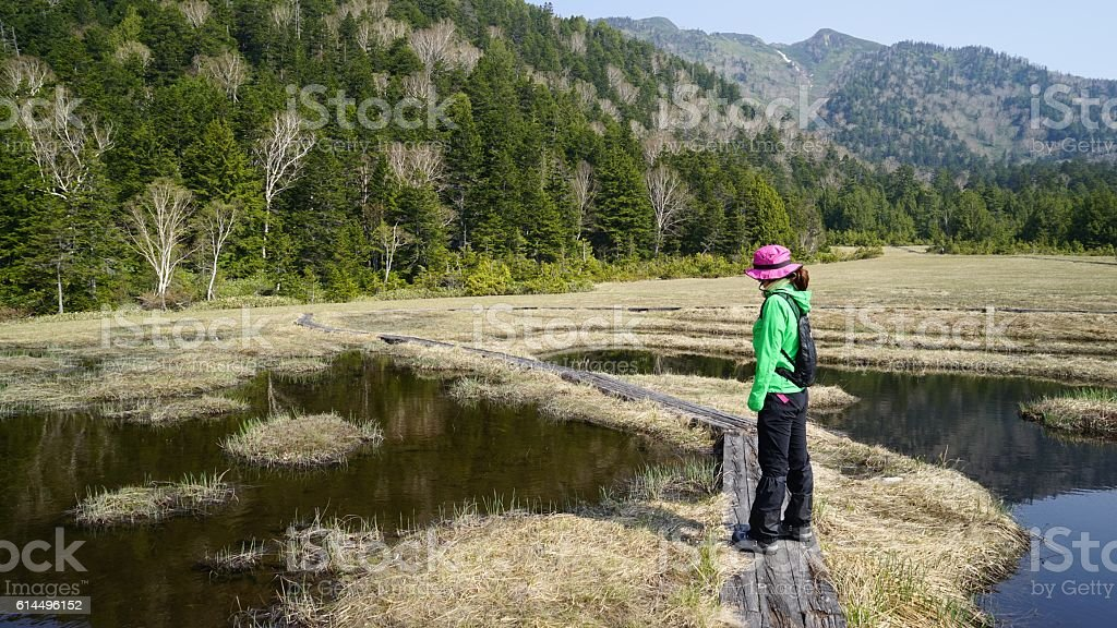 The girl who looks at a pond bank in wetlands stock photo