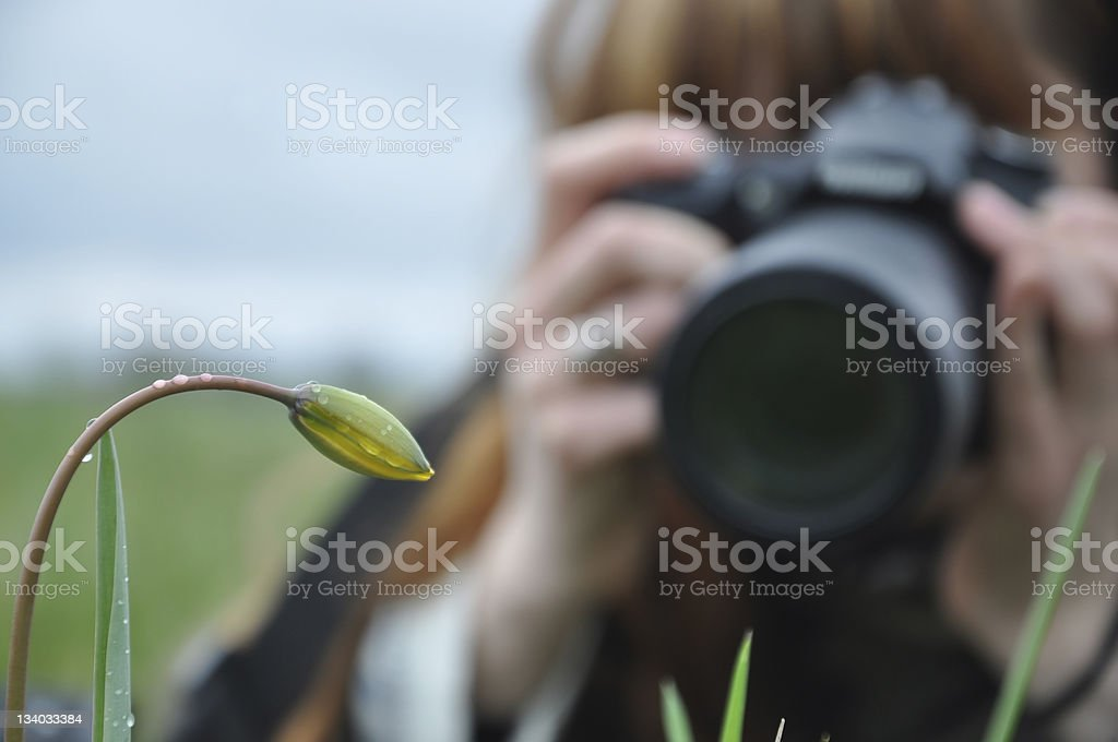 The girl-photographer royalty-free stock photo