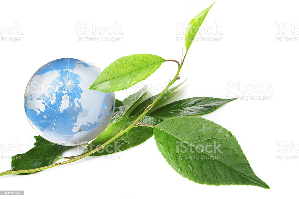 The globe concept eco royalty-free stock photo