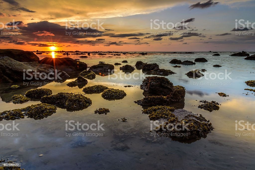 The golden hour sunset. stock photo