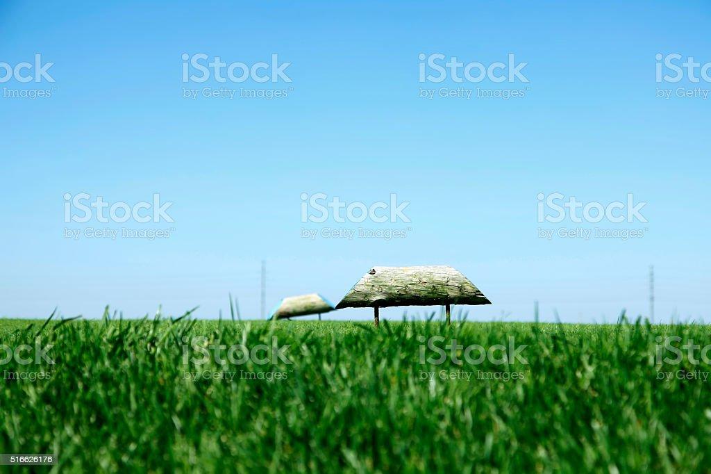 The golf course landscape stock photo