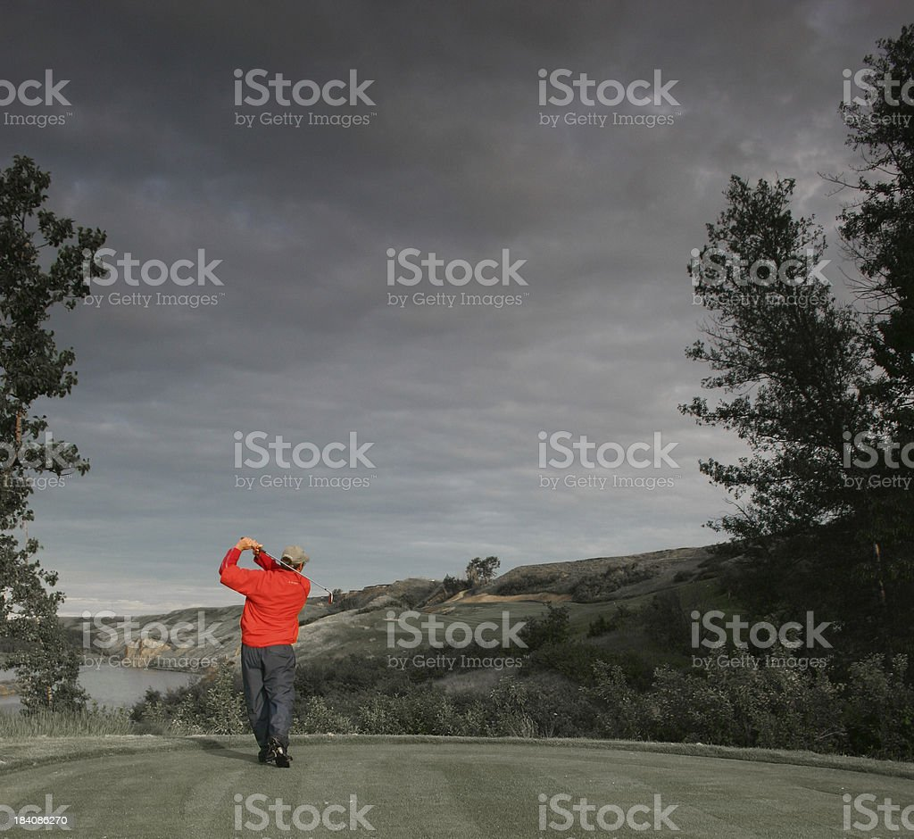 The Golfer royalty-free stock photo