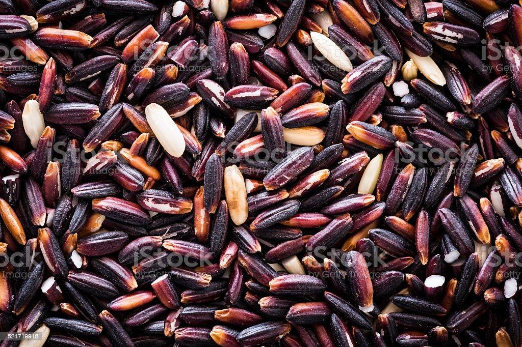 The grain is colored purple to white. stock photo