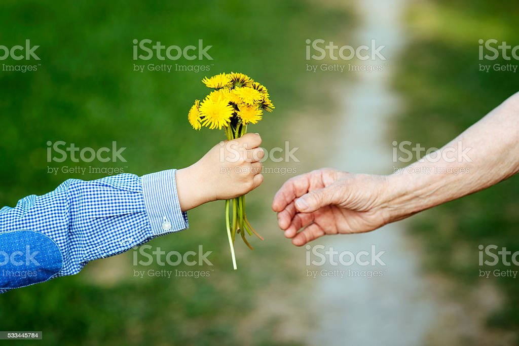 the grandson gives to the grandmother flowers stock photo