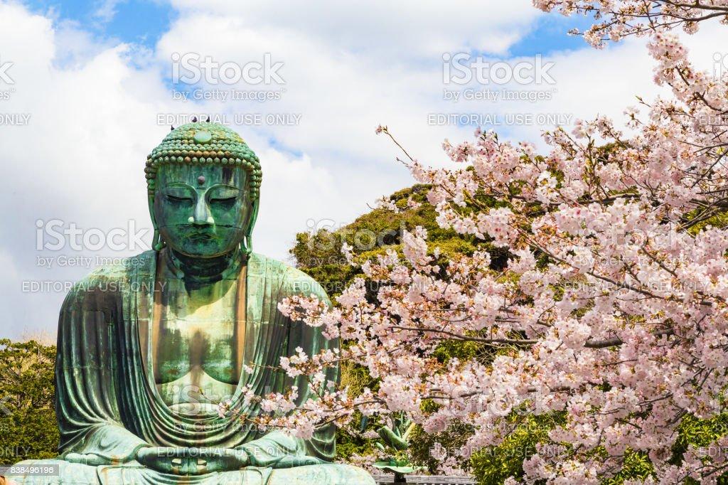 The Great Buddha in Kamakura Japan stock photo