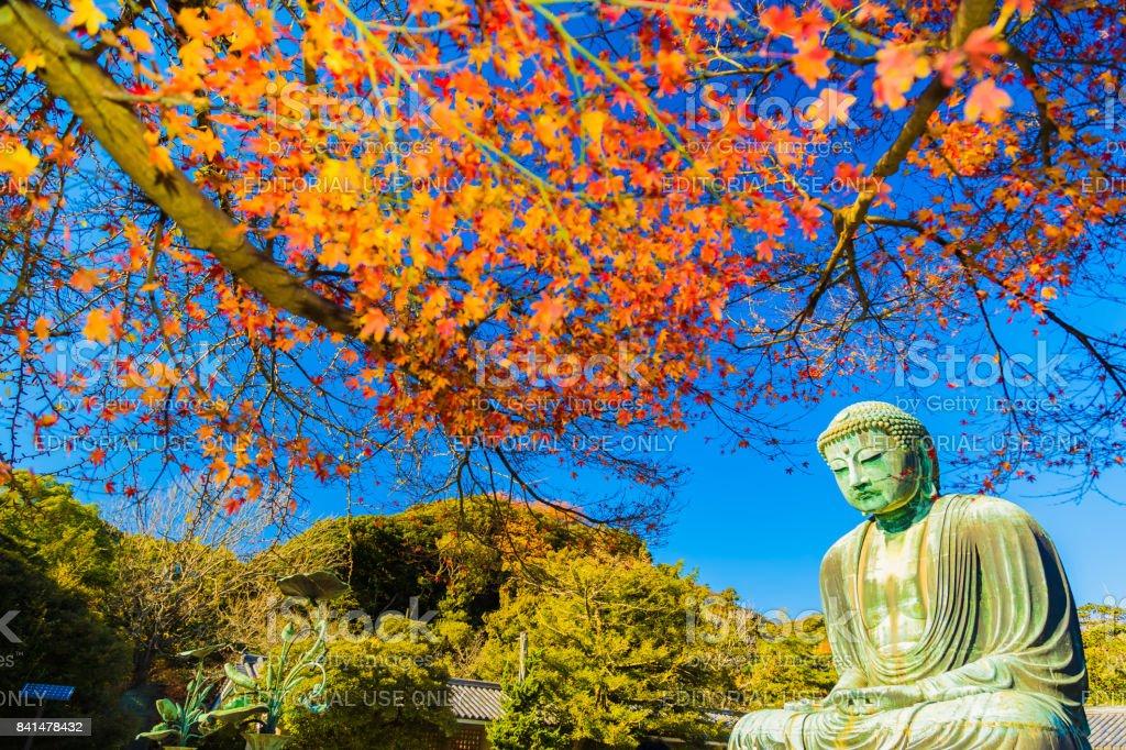 The Great Buddha stock photo