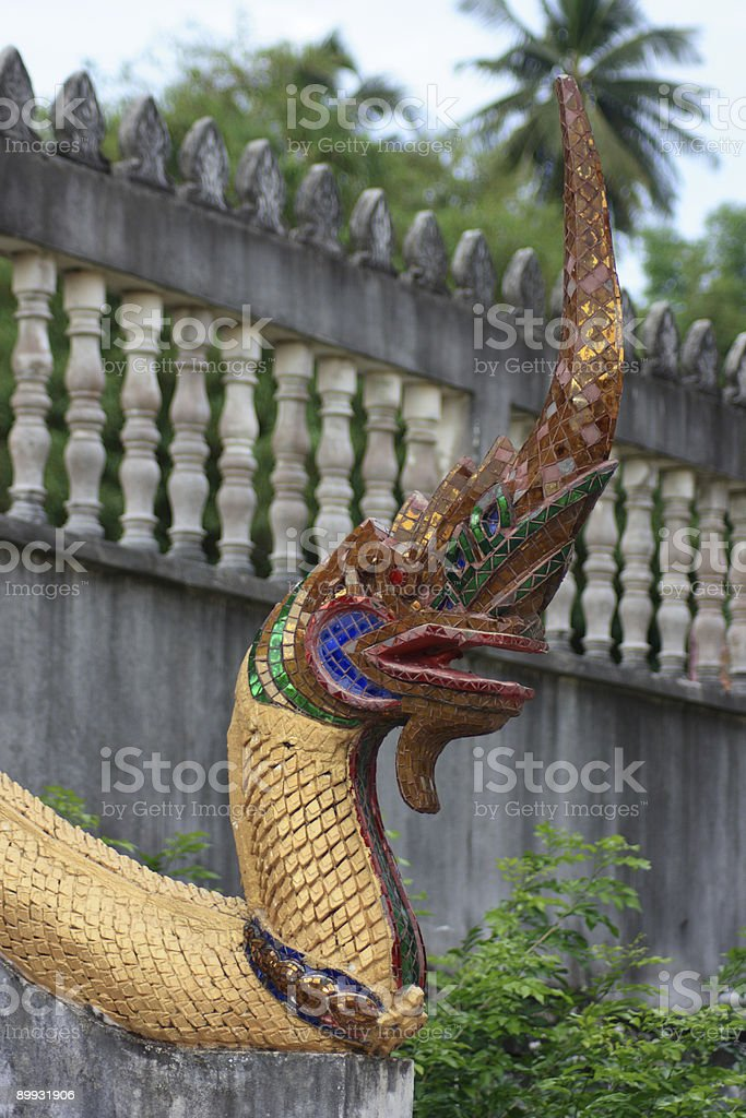 Great Serpent'NAG' – Foto