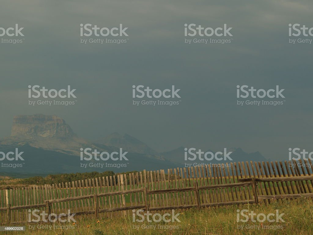 The Great Smoke Out stock photo