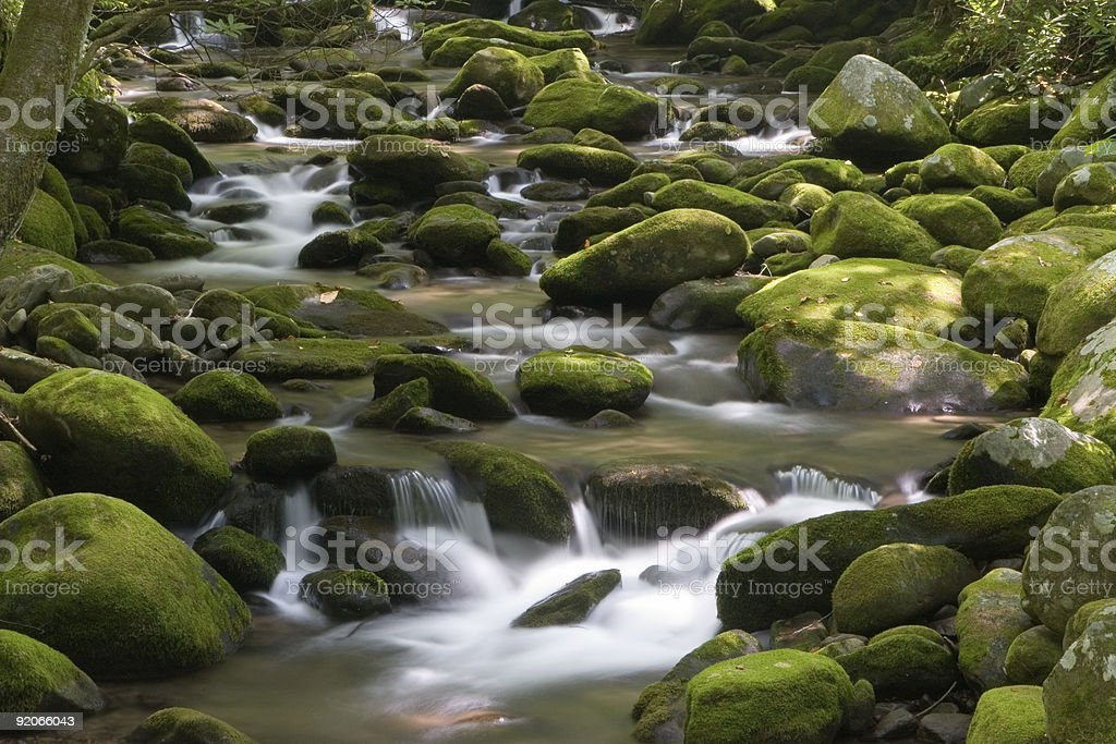 The Great Smoky Mountains roaring fork motor trail royalty-free stock photo