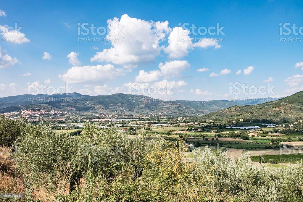 The green countryside in Castiglion Fiorentino, Tuscany stock photo
