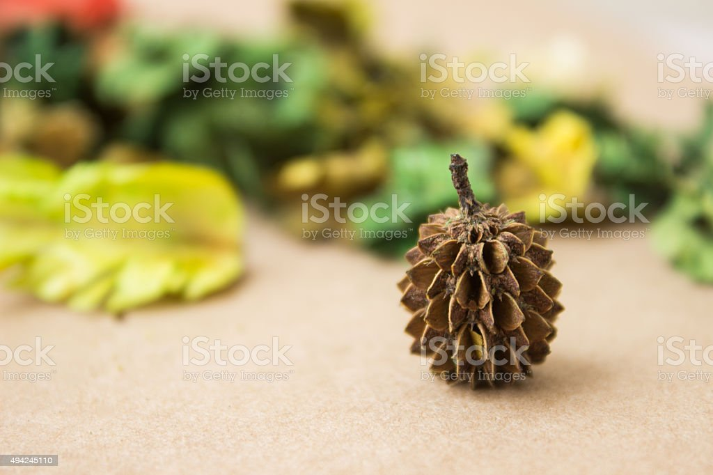 The Green Dry Aroma stock photo