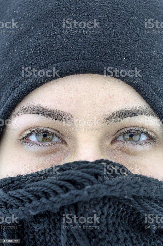 the green eyes royalty-free stock photo