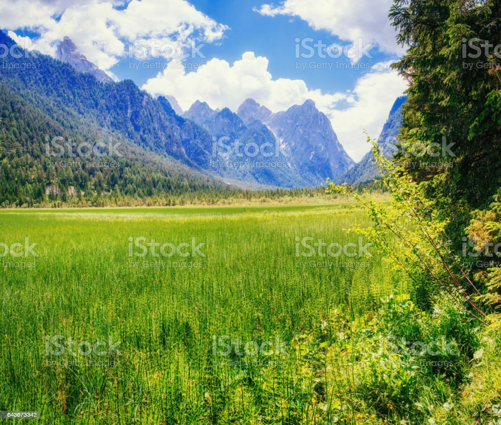 The green grass and rocky mountains. Dolomite Alps, Italy stock photo