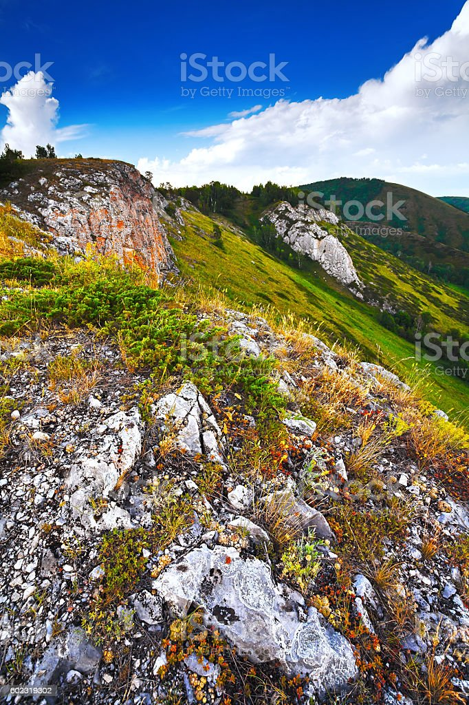 The Green Mountains in fog. stock photo