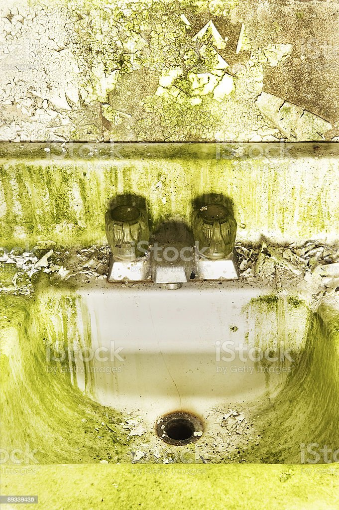 The Green Sink royalty-free stock photo