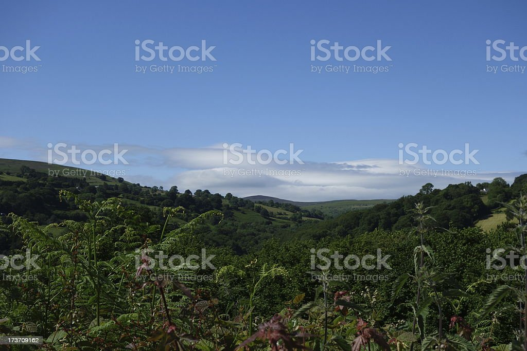the green Valleys of Wales stock photo