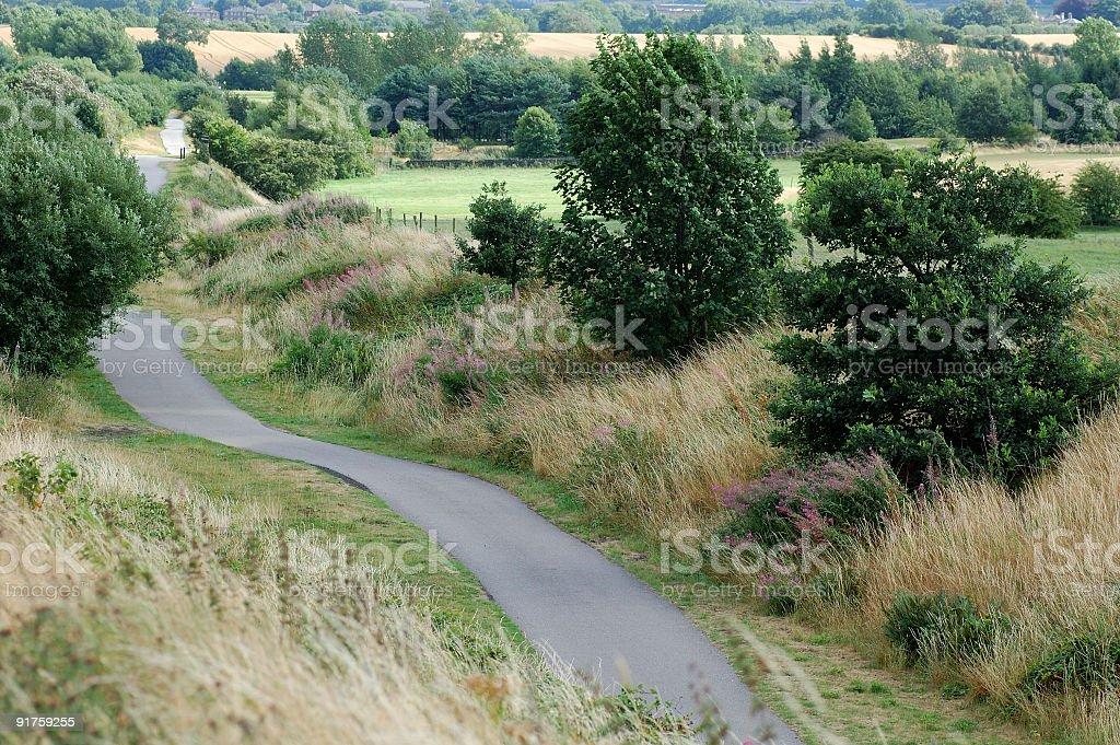 The Green Way royalty-free stock photo