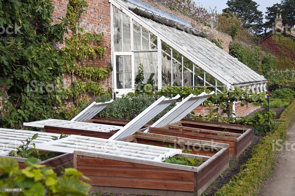 The Greenhouse stock photo