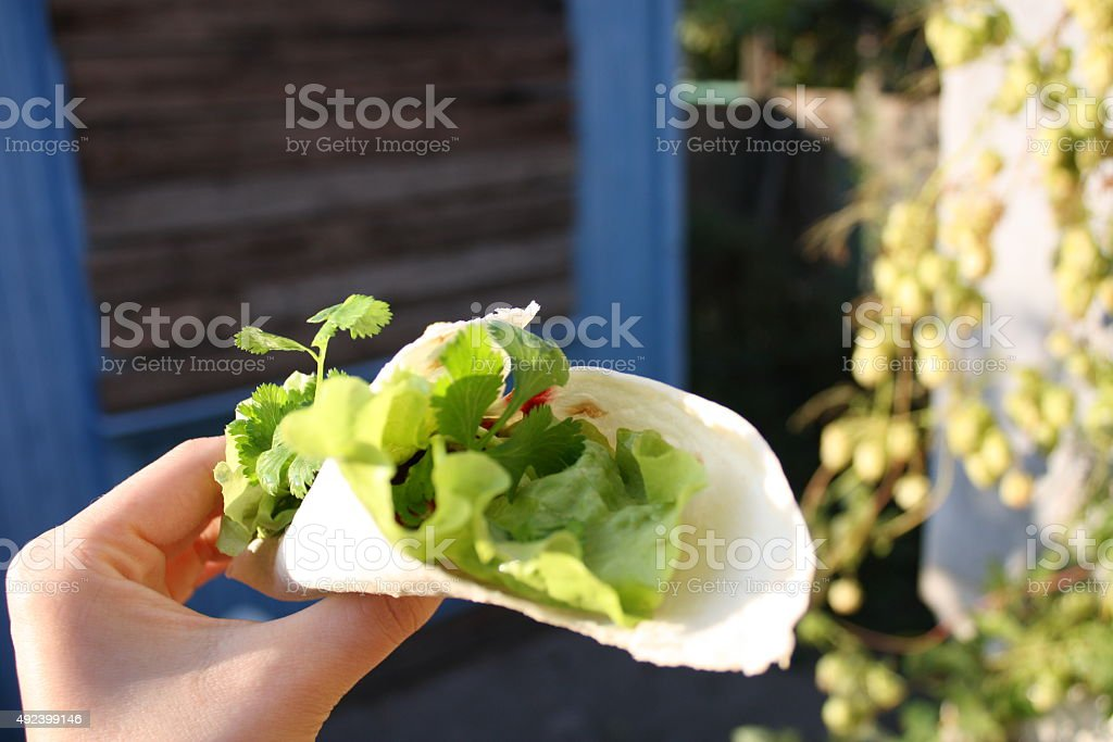The greens wrapped in pita bread. royalty-free stock photo