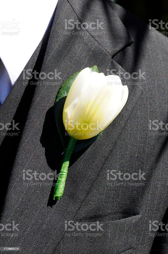 The groom stock photo