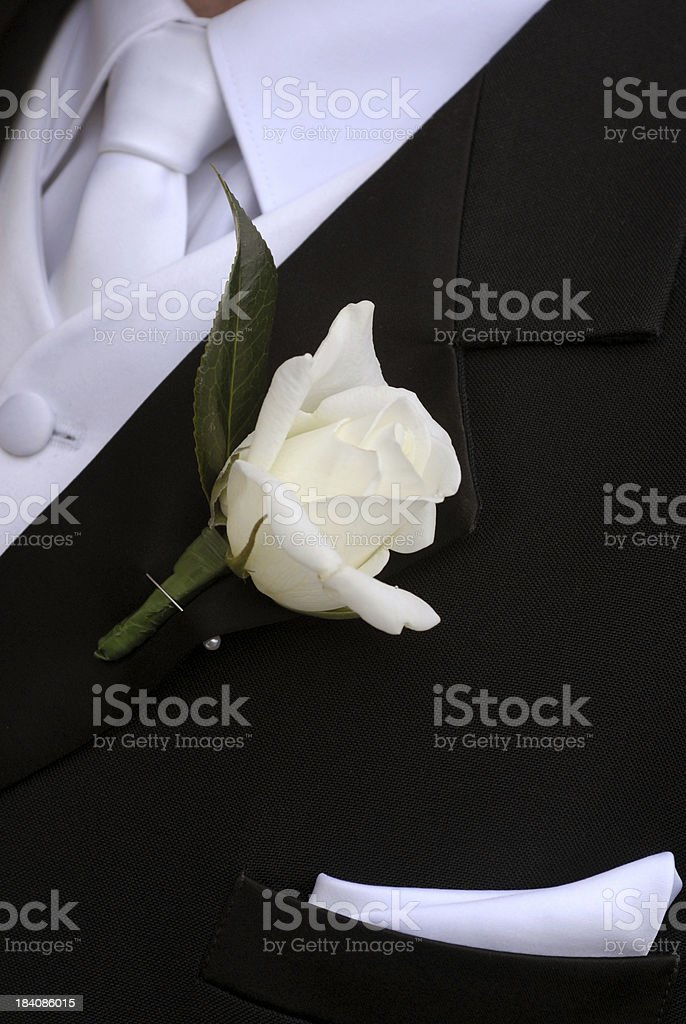 The Groom royalty-free stock photo
