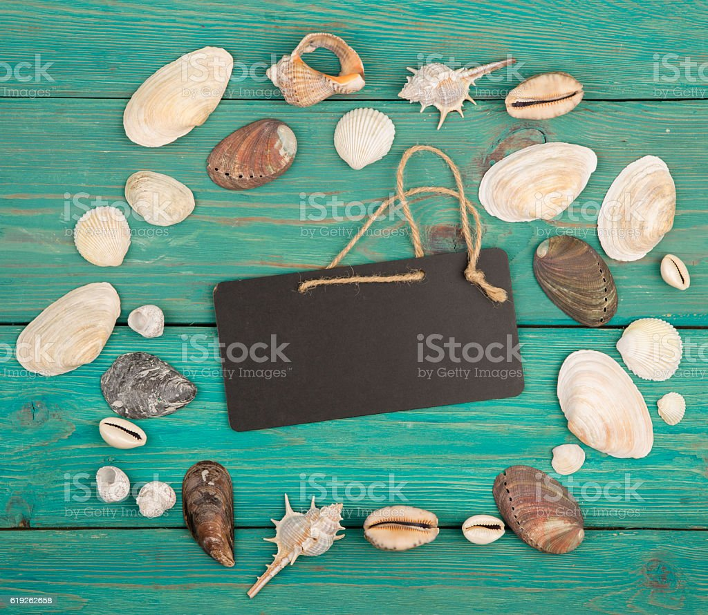The group of sea shells and signboard stock photo