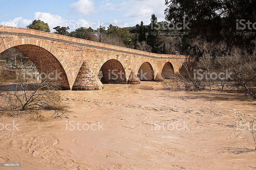 The Guadalquivir River, Spain royalty-free stock photo