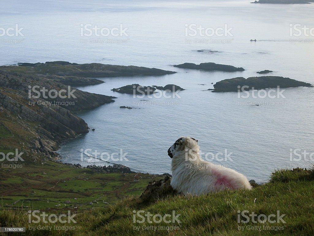 The Guardians of Ireland royalty-free stock photo