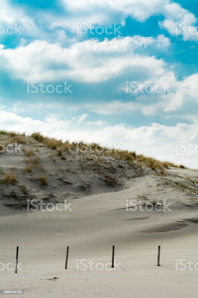 the hague beach dunes stock photo
