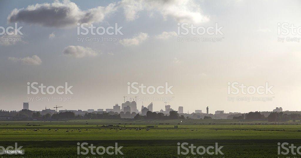 The Hague cityscape royalty-free stock photo