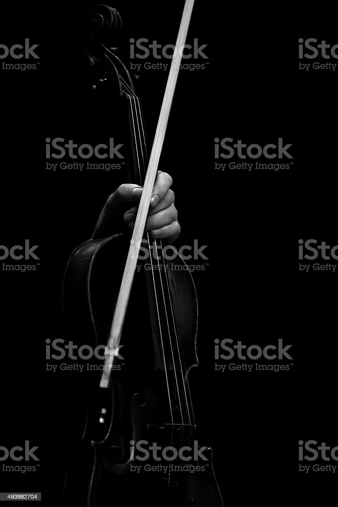 The hand holding the violin stock photo