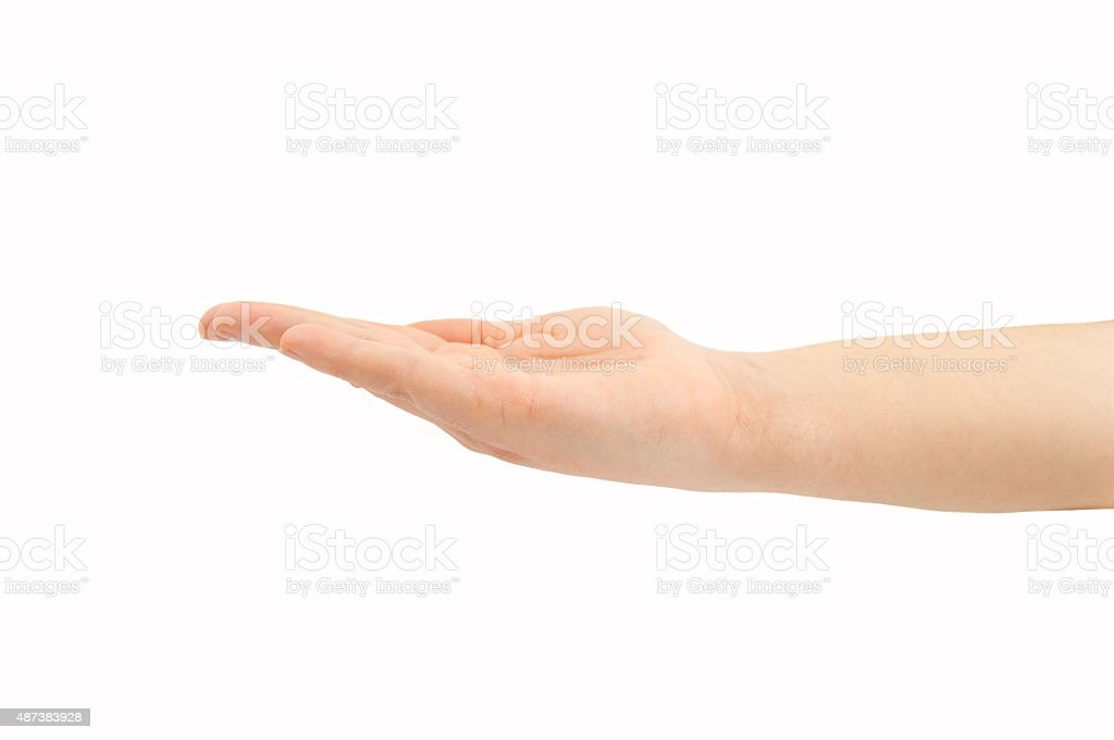 the hand holds in horizontal stock photo